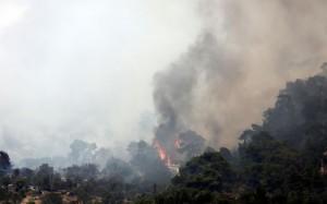 WILDLAND FIREFIGHTER LODD IN GREECE