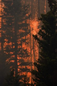 SIX FIREFIGHTERS INJURED SO FAR IN UTAH WILDFIRE