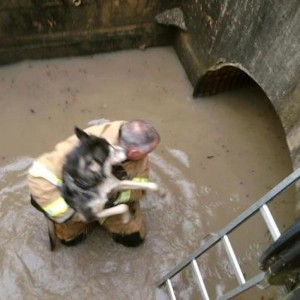 TURNOUT GEAR AND WATER RESCUE? NEVER A GOOD IDEA