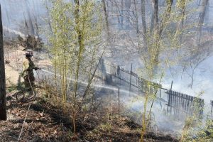 NY FIREFIGHTER SUFFERS SHOULDER INJURY AT BRUSH FIRE