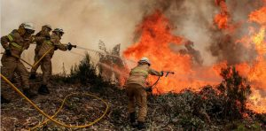 FOUR FIREFIGHTERS AMONG SEVERAL INJURED IN PORTUGAL WILDLAND FIRE