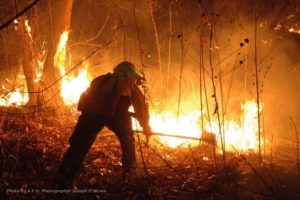 A QUIET RISE IN WILDLAND FIREFIGHTER SUICIDES