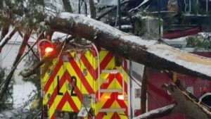 FIREFIGHTERS MAKE RESCUE AT FIRE-THEN A TREE COMES SLAMMING DOWN ON THEIR APPARATUS
