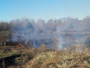 NY FIREFIGHTER SUFFERS EYE INJURY AT GRASS FIRE