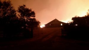 "CALLERS TOLD ""NO FIRE"" – 74 STRUCTURES DESTROYED"