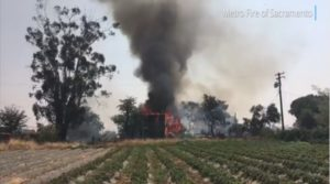 CALIF. FIREFIGHTER SUFFERS HEAT INJURY AT VEGETATION, STRUCTURE FIRE