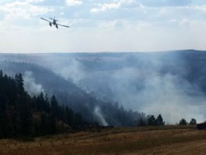 WA FIREFIGHTING PLANE CRASHES, PILOT SURVIVES