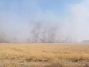 2 NV FIREFIGHTERS BURNED AT WILDLAND FIRE – HELICOPTER ALSO CRASHES