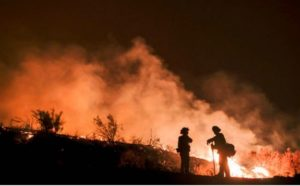 RESEARCH: WILDLAND FIREFIGHTERS' HEALTH, REACTION TIME FALTERS